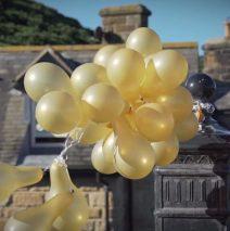 A Wedding Video from Raithwaite Estate in Whitby